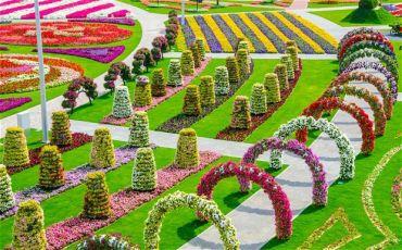 Самое большое «цветочное чудо» в мире теперь в Дубае